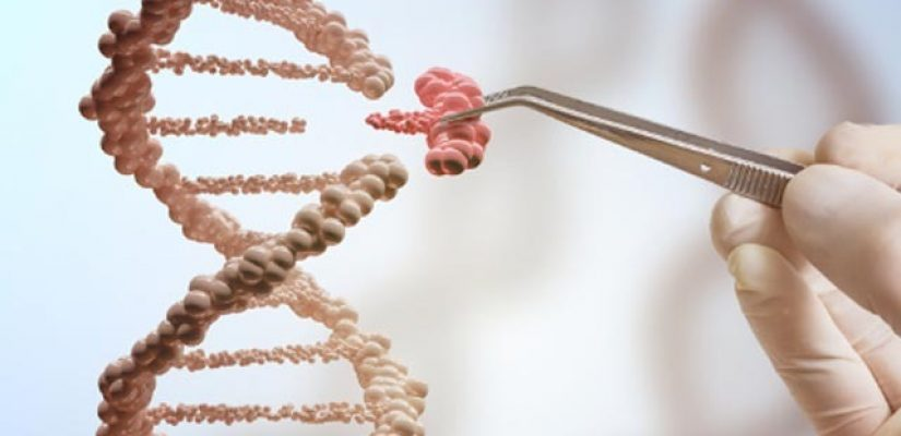 expand-the-gene-editing-toolbox-scientists-sharpen-their-molecular-scissors-315822