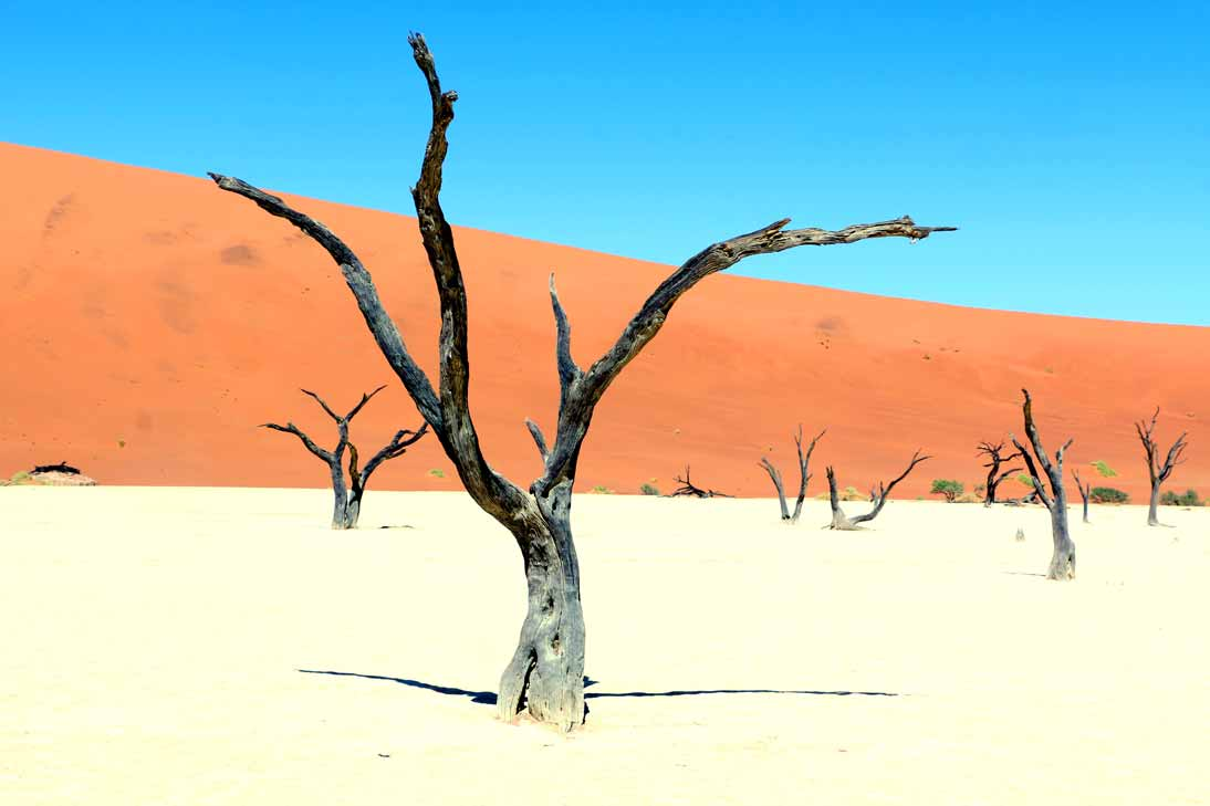 Namibia-road-trip-guide-Part-1-21